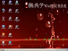 鱼非子WinPE x64版 3.1 最新版[图]